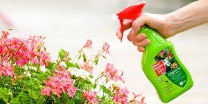 insecticida-pulgones